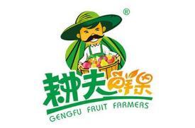 耕夫鲜果进口水果加盟
